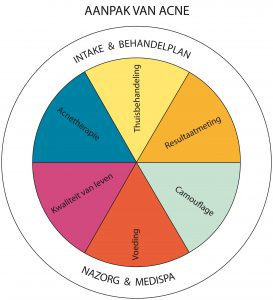 cirkelmodel-aanpakvanacne-lucidasans aangepast